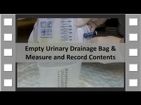 Empty Urinary Drainage Bag CNA Skill NEW